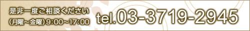 お問い合わせは03-3719-2945です。