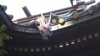 拝殿の屋根の両側から龍が顔をのぞかせています。
