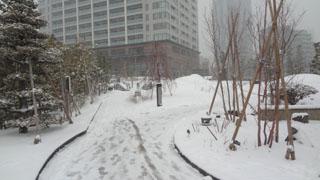 降り始めて何時間も経過している訳ではないのにもう一面の雪。