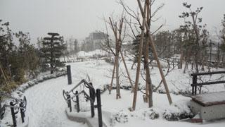 少し申し訳ない気持ちを感じながら雪の公園を見物です。