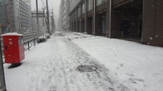 帰りは行きよりも困難な山手通り。10時半の時よりも確実に積雪が多くなっている。