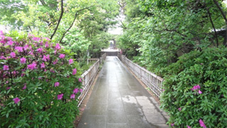 あがったばかりの雨で山門から続く石畳みが濡れていいちょっと雰囲気です。